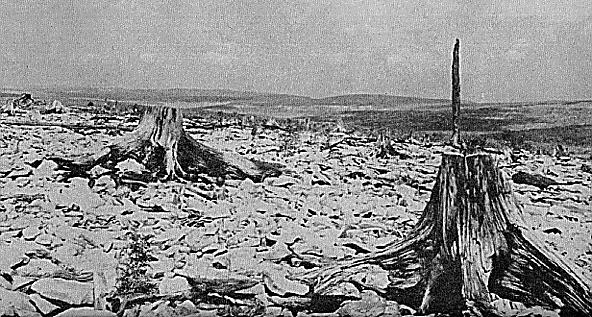 This old photograph looks from Cabin Mountain into the northern stretches of the Dolly Sods Wilderness. Today, over 100 years later, the summit of Cabin Mountain is still devoid of trees and soil.