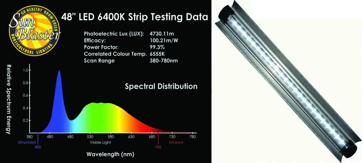 A Sample Spectroradiometer Graph