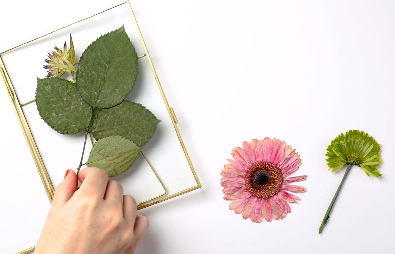 ftd-press-flowers-frame-step2.jpg