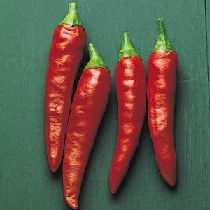Pepper Super Chili (HOT)