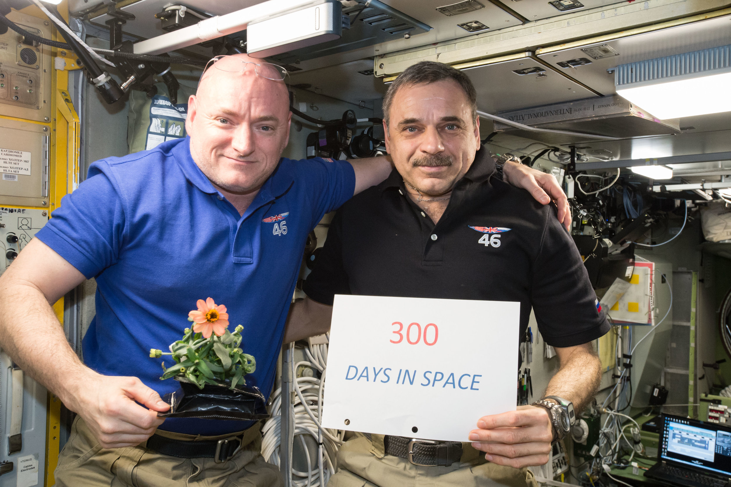 (01-22-2016) — One-year mission crew members Scott Kelly of NASA (left) and Mikhail Kornienko of Roscosmos (right) celebrated their 300th consecutive day in space on Jan. 21, 2016. Kelly is holding a zinnia grown in space as part of the Veggie experiment. Credits: NASA