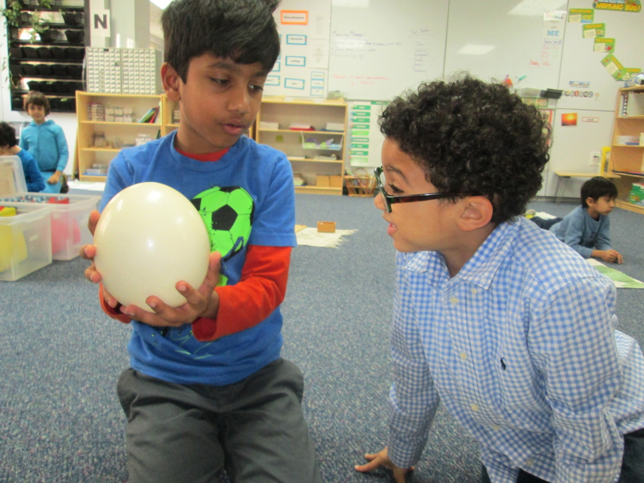 First grade Lower Elementary East students continued their studies in Zoology with a lesson about birds. Thanks to Ms. Susan from LEN, the students saw various specimens ranging from different kinds of birds, to nests, to an Ostrich egg!
