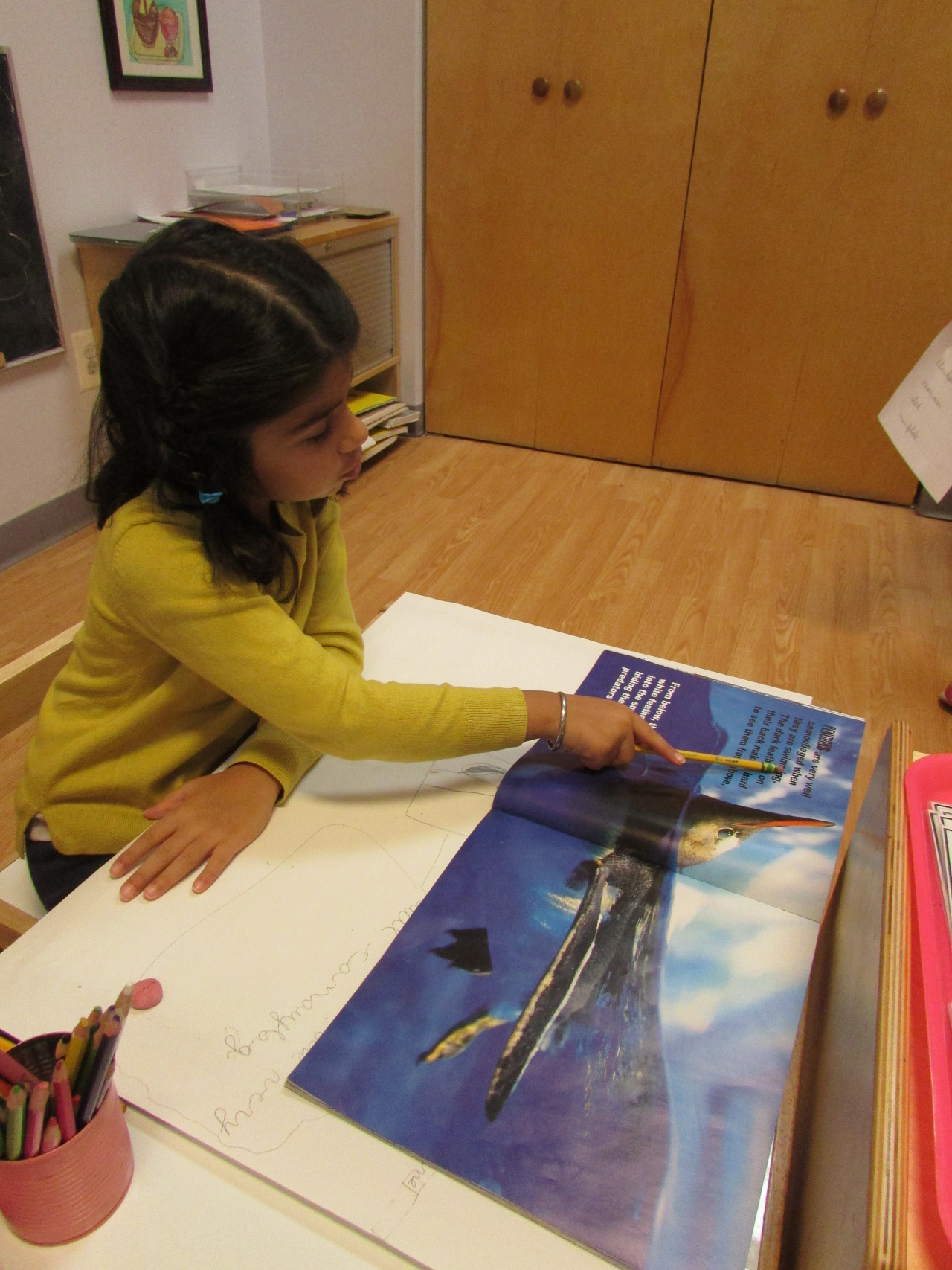 A Primary 2 Kindergartener read about penguins and created a poster with relevant information.