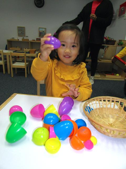 T2 eggs 4.jpg