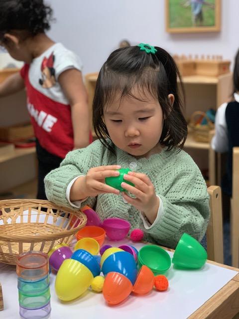 T2 eggs 3.jpg