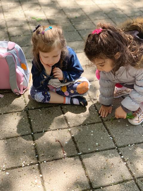 T2 playground 2.jpg
