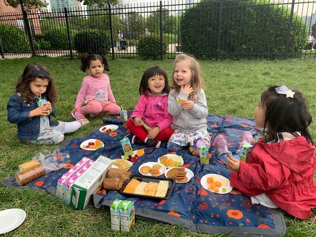 T2 picnic 1.jpg