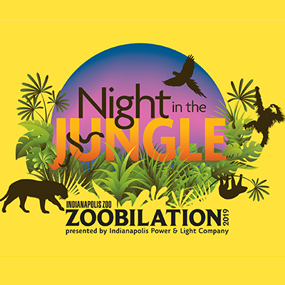 Steps away from the city's center, you can spend a Night in the Jungle during Zoobilation presented by Indianapolis Power & Light Company. This single luxurious night is Indianapolis' premier black-tie fundraiser and the biggest party for animal conservation in the state!  Indy's most anticipated event of the year begins with the Premium Experience presented by Ice Miller LLP at 5:30pm followed by general admission from 7pm to midnight.  For its 33rd year, the theme for Zoobilation is a Night in the Jungle to celebrate the arrival of the Zoo's newest animals, sloths and snakes. Species including reticulated pythons, green mambas and two-toed sloths are native to lush, exotic forests in different regions of the globe, offering endless inspiration for attendees' animal-themed formal attire.  More than 5,000 guests will sample the finest culinary creations from 70 of Central Indiana's most popular restaurants, all vying for Zoobilation's coveted people's choice and blue-ribbon awards. Plus, attendees will sip cocktails, wines and other drinks, with beverages presented by  Republic National Distributing Company  and served at 15 public bars — all set amid the Indianapolis Zoo's amazing animals and exhibits!  As the sun sets on the city, party goers can dance into the darkness to rocking music presented by  Bose McKinney & Evans LLP , with live entertainment featured on multiple stages throughout the Zoo.  Zoobilation is also a party with a purpose! As a privately operated, nonprofit organization that receives no direct tax revenue, the Indianapolis Zoo relies on fundraising events like Zoobilation to help advance its animal conservation mission. The Zoo's largest single-day fundraiser, Zoobilation helps provide food and care to the Zoo's 1,200 animals and 47,000 plants, as well as funding for local and international conservation efforts. In 2018, we raised a record $2.5 million to support animal conservation.