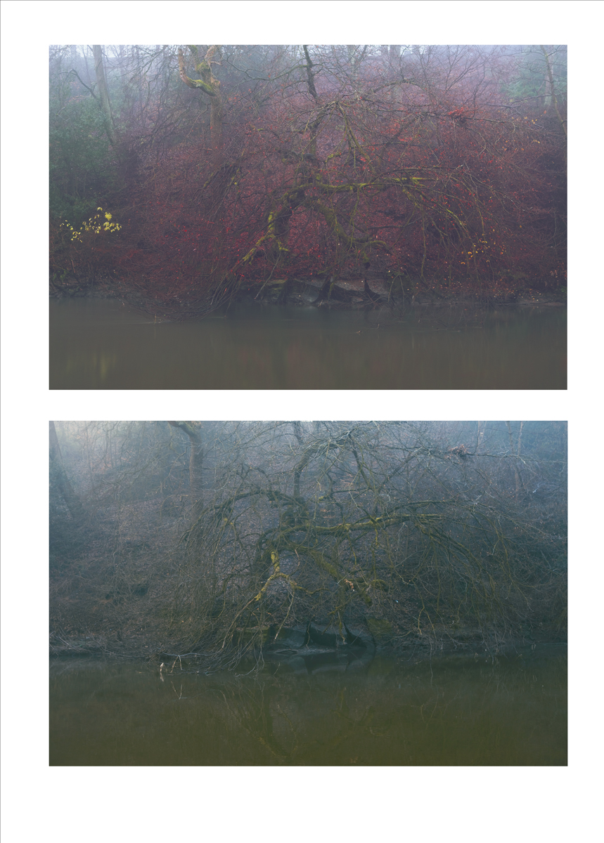double_image_river_04 copy.jpg