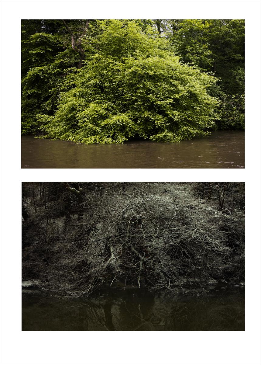 double_image_river_05 copy.jpg