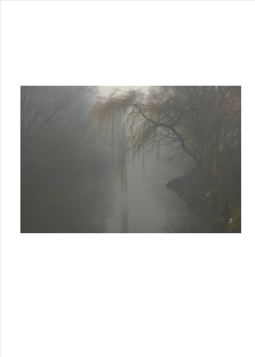 single image_river_07 copy.jpg