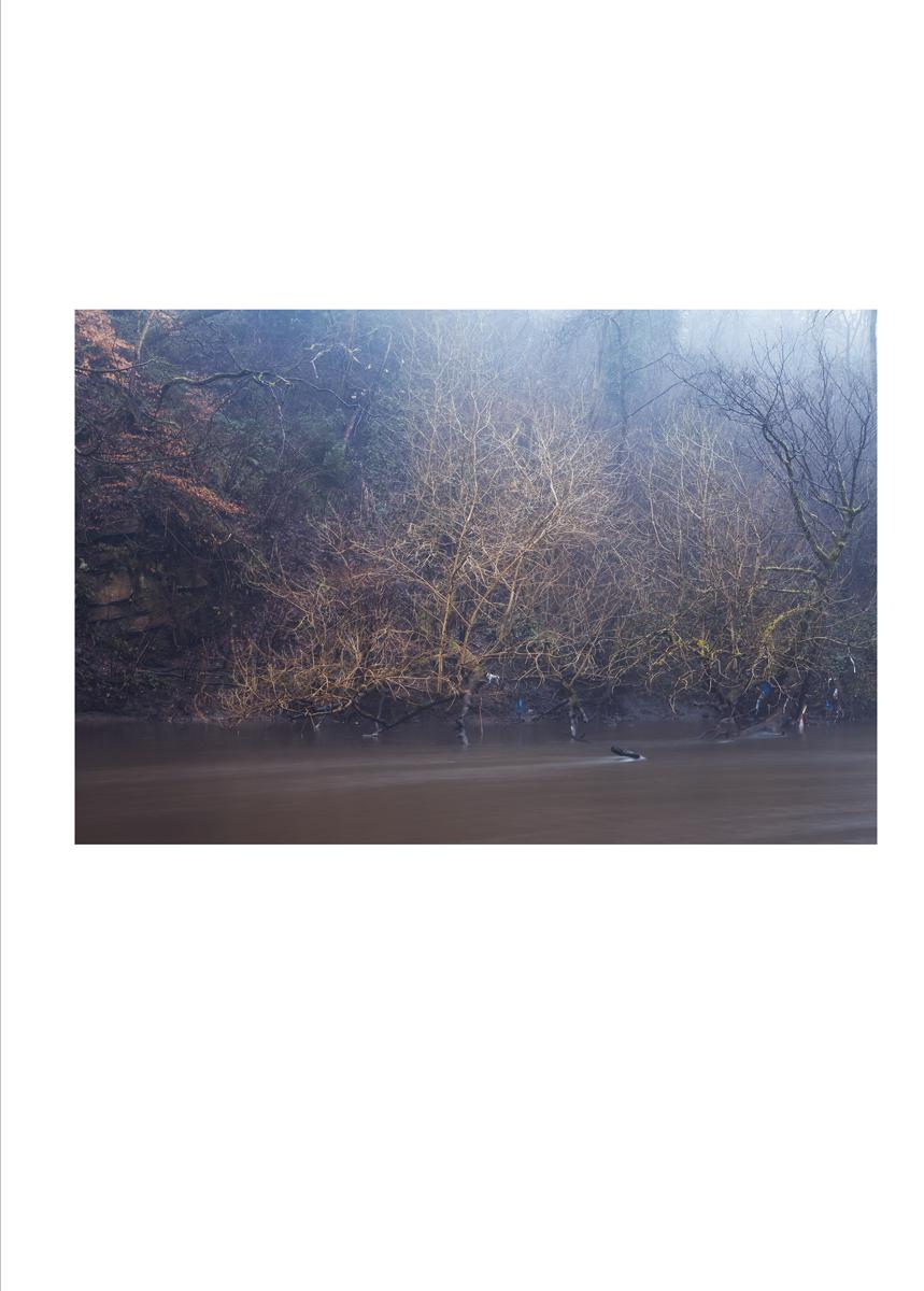 single image_river_18.jpg