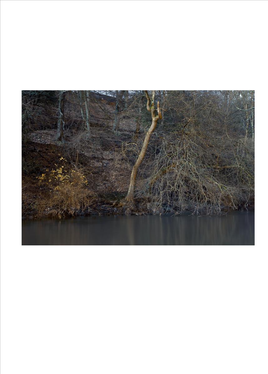 single_image_river_02.jpg