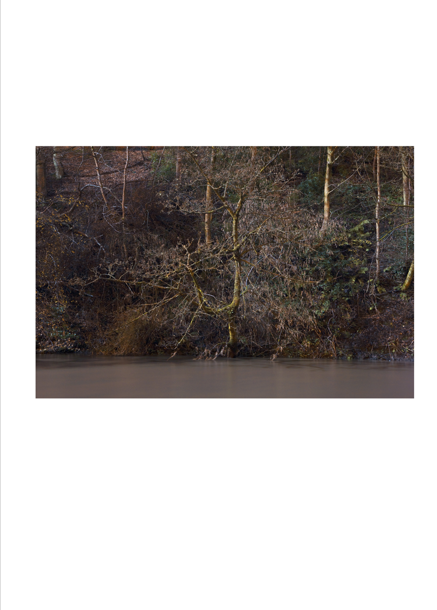 single_image_river_03.jpg