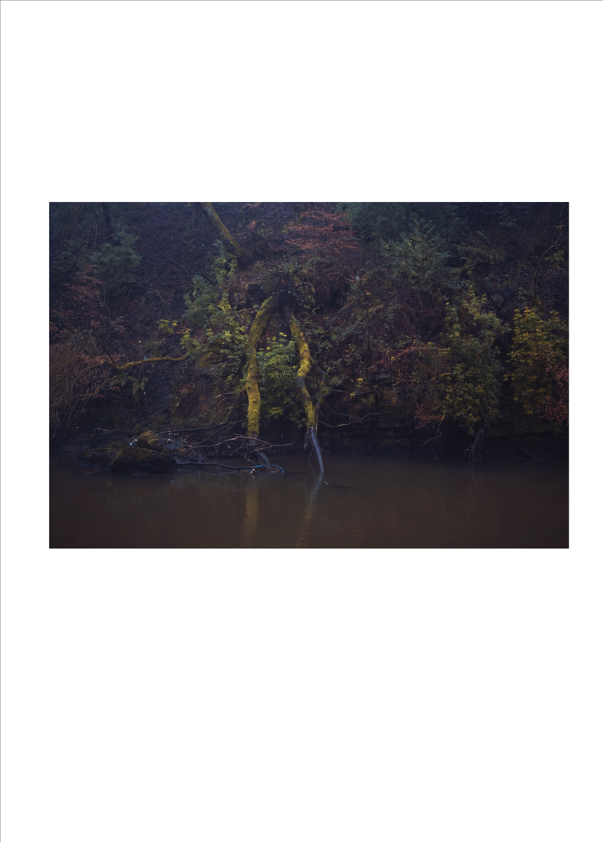 single_image_river_05.jpg