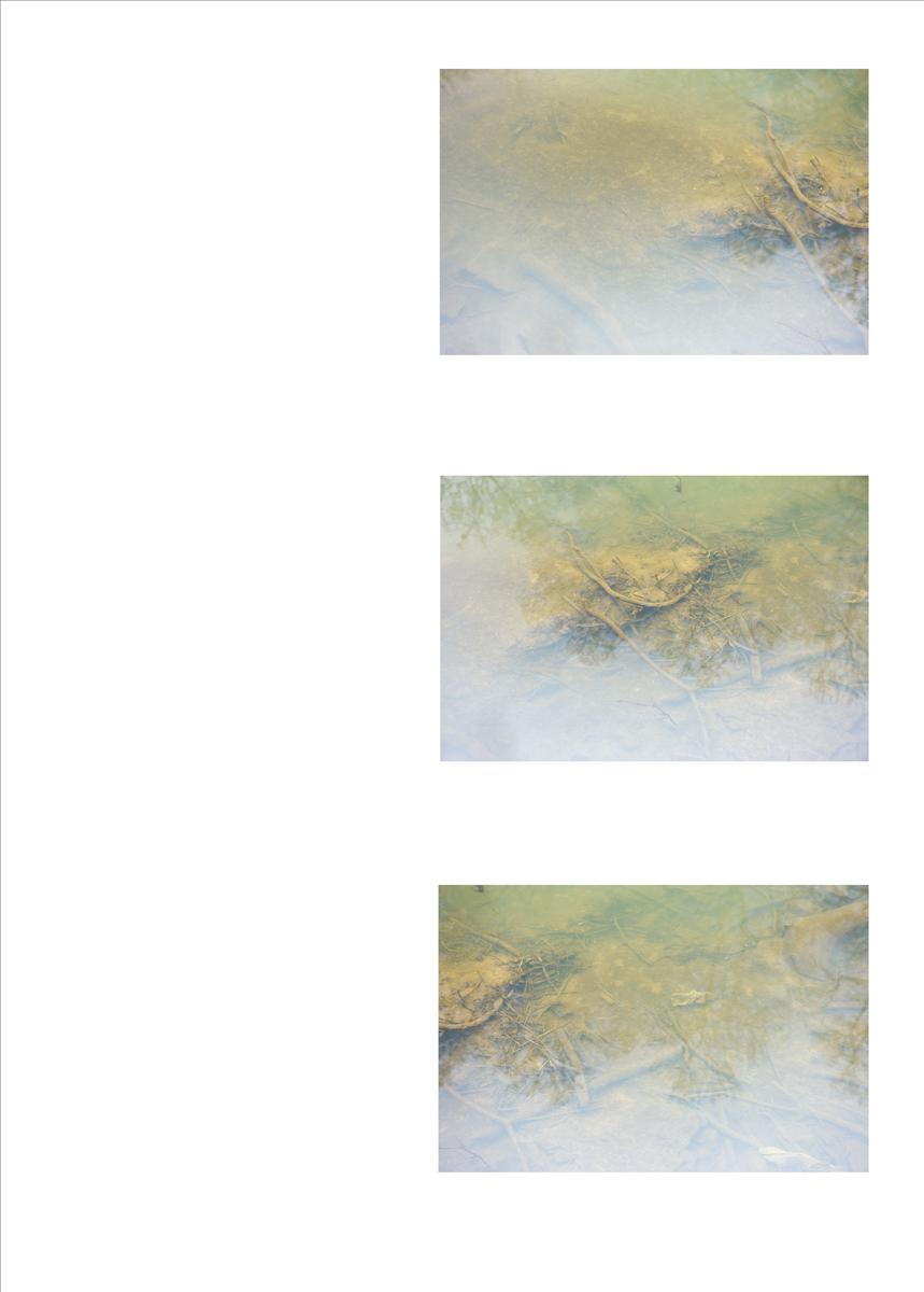 tryptyc_image_river_02.jpg