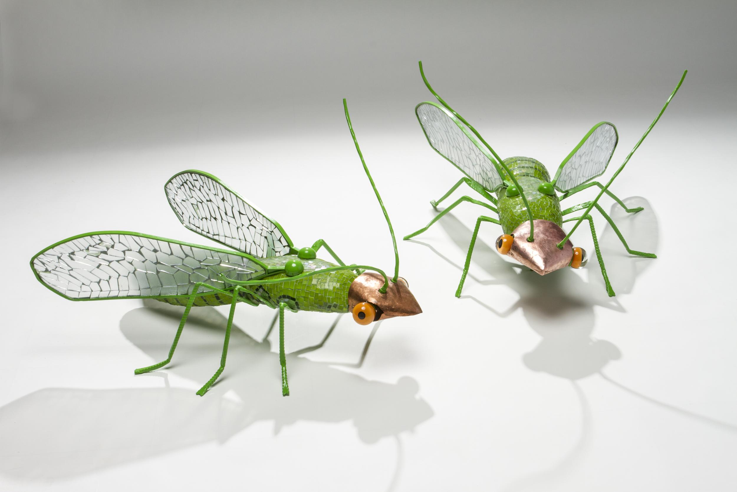 Bug2 2.jpg