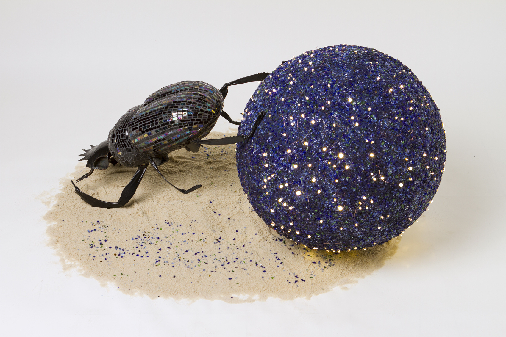 Dung Beetle Navigates by the Stars copy.jpg
