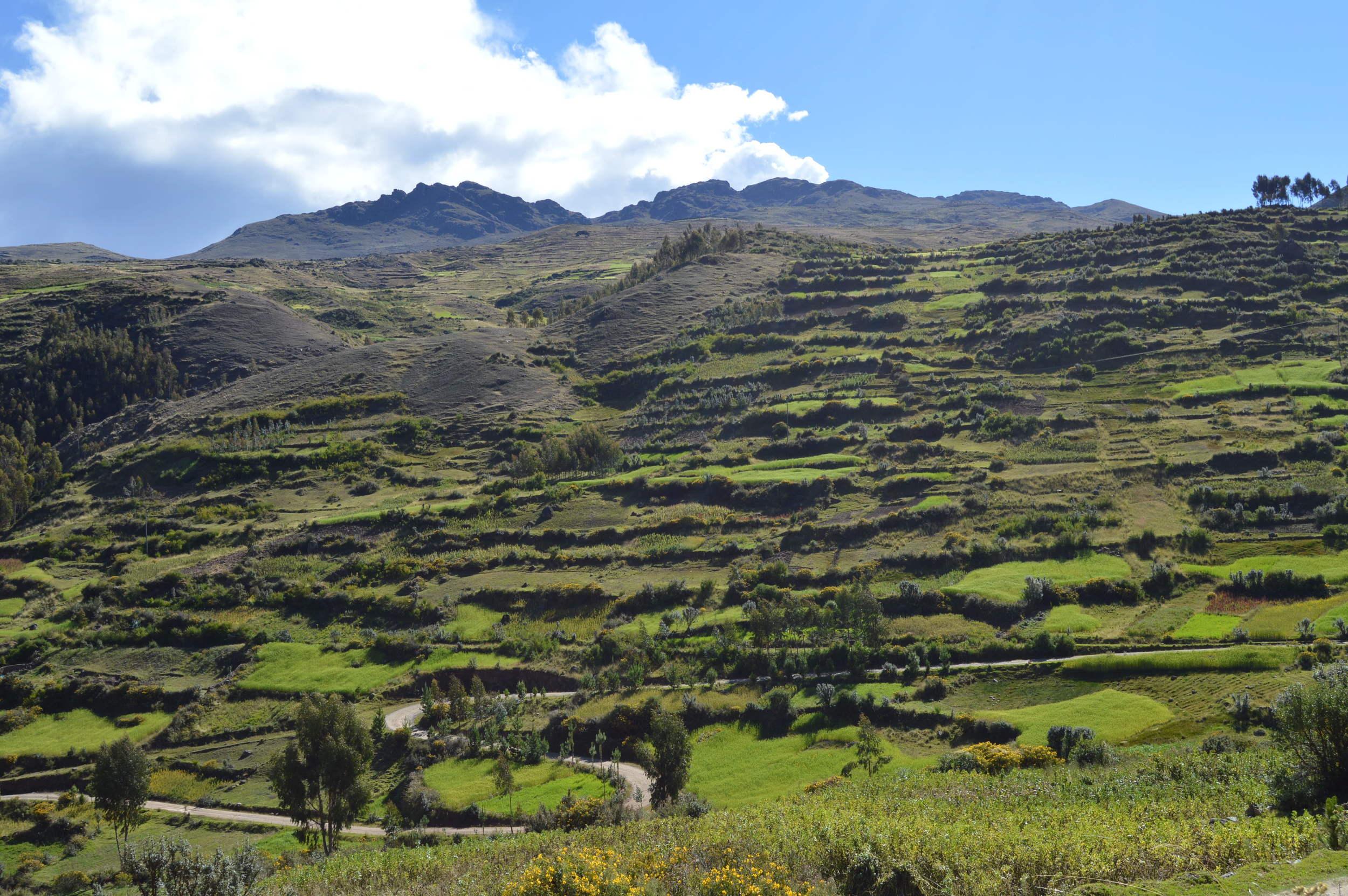 Farming teraces of Paru Paru Community near Cusco, Peru