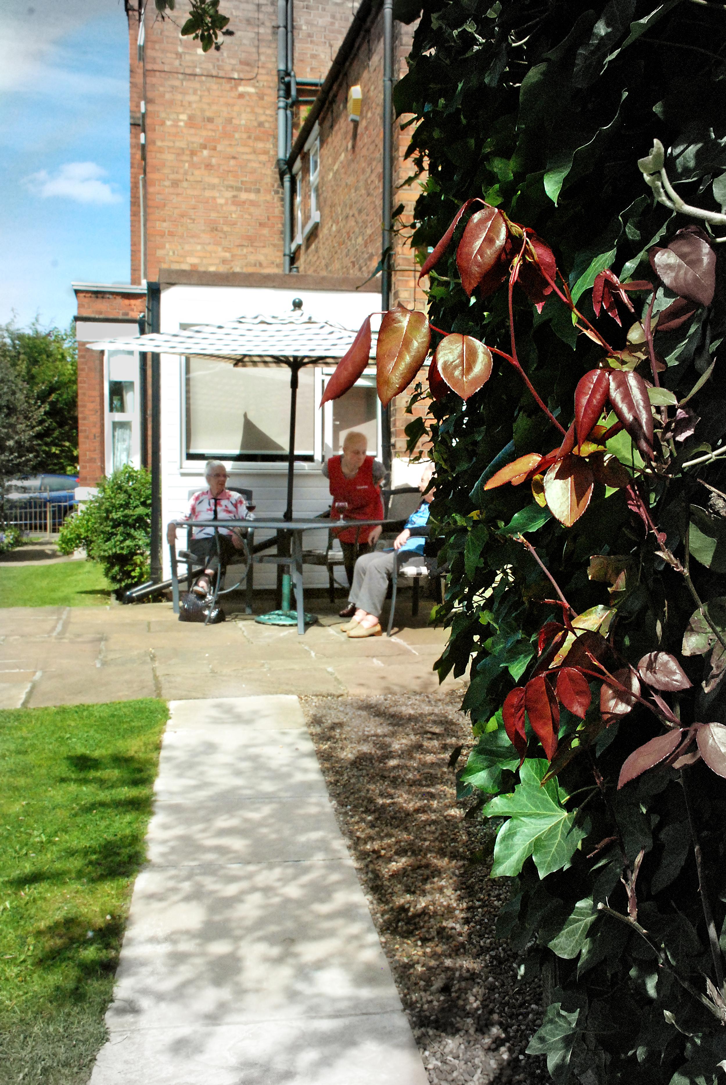 sittingoutdoors-behind bush.jpg