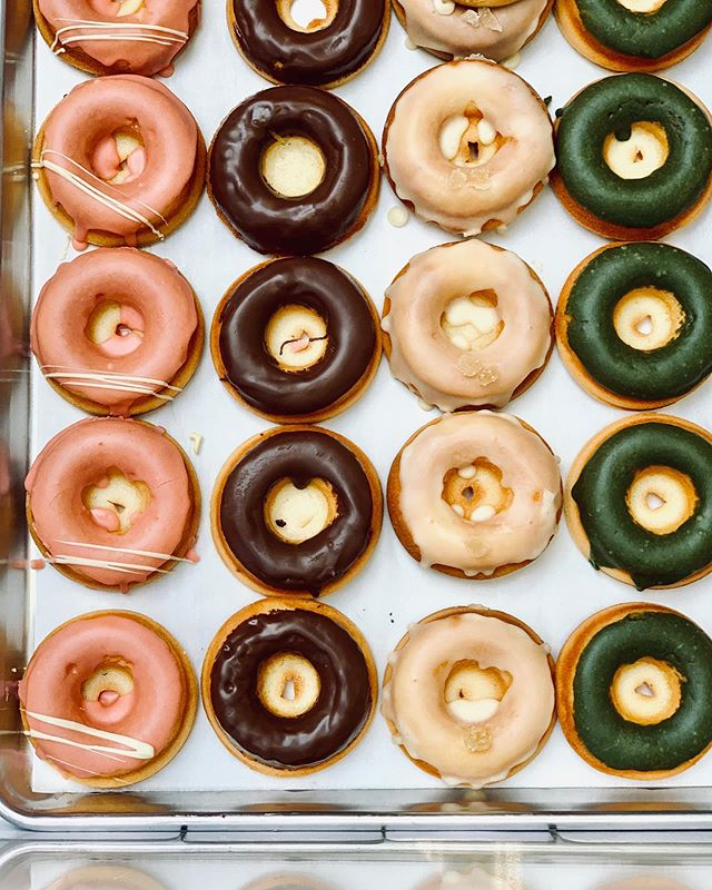 The world might be going to shit but it's  been a really awesome few weeks for me personally, and I can only hope that when I'm feeling good inside that it'll radiate outward and touch others. Dig deep and find those things that make you happy because we need more happy people to support those that are struggling. Also, everyone deserves a donut today. Here are some mochi donuts from @thirdculturebakery, a place you should most definitely visit because the vibes in there are ✨🌈☀️💯
