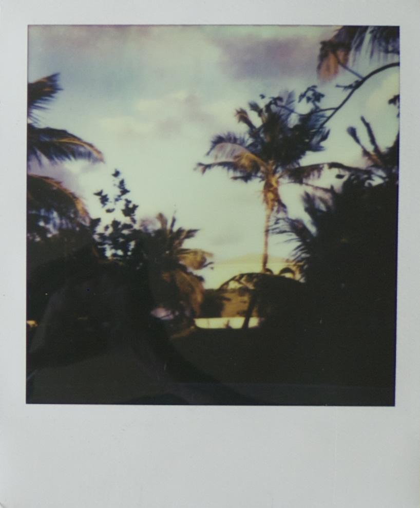 of_polaroidA.jpg