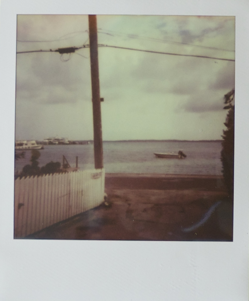 of_polaroidC.jpg