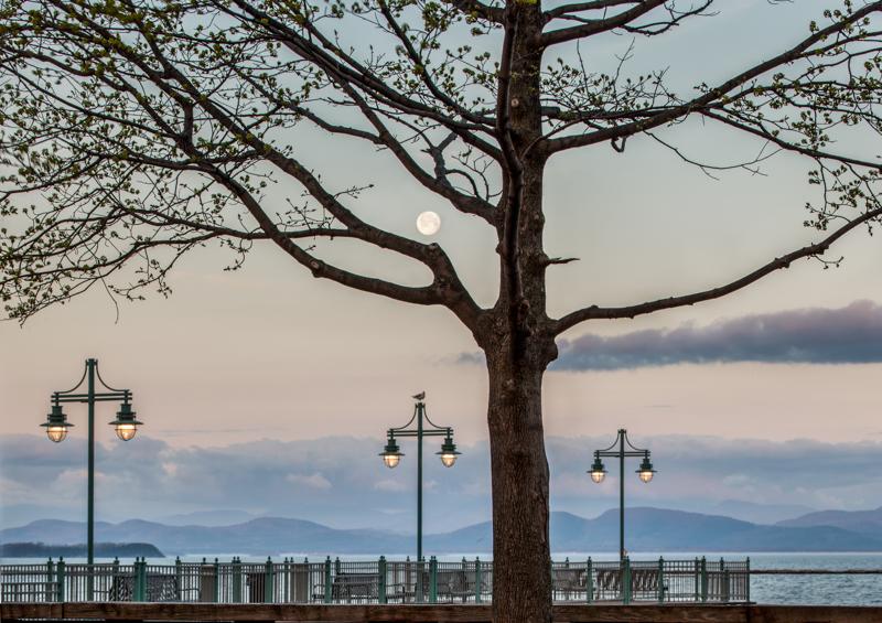 Spring Moon Light Canon EOS IDS Mark III 100mm 1/8 sec f14 ISO 100