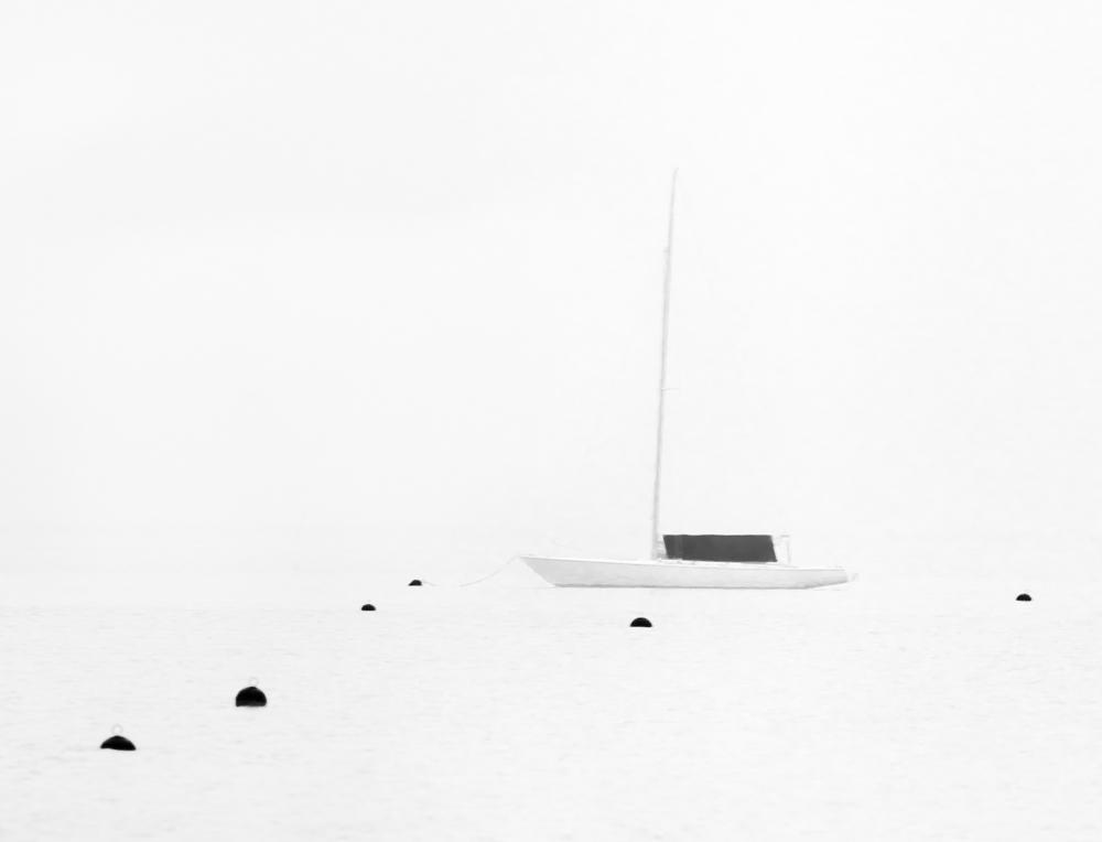 Early Harbor
