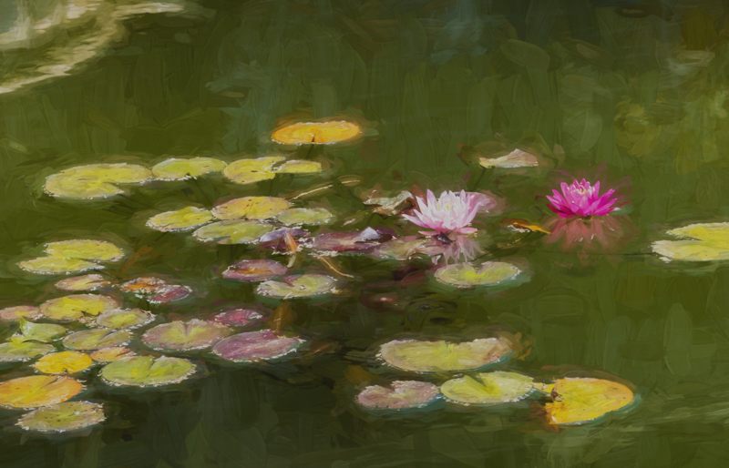 Single Pond