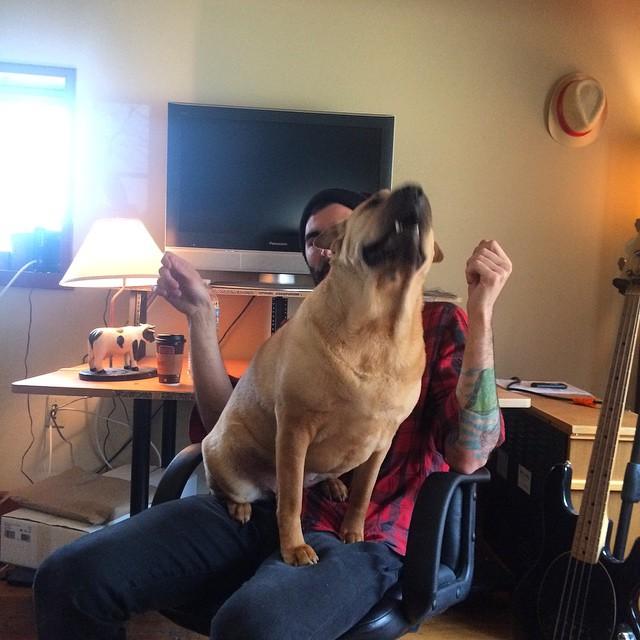 Ella is stoked to record  #thefarmstudio #sidesaddlemusic