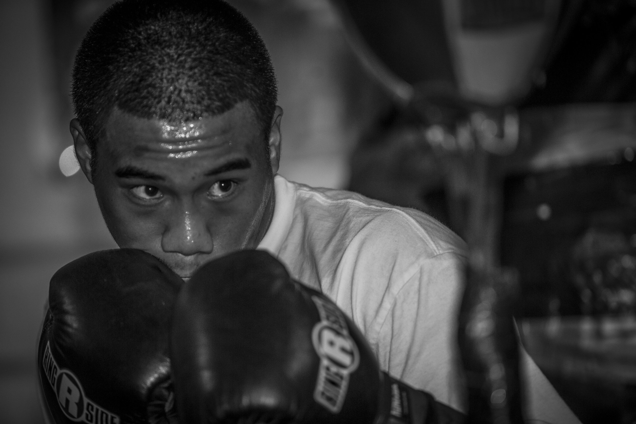 BowyerD_Thur_Boxing-3-2.jpg
