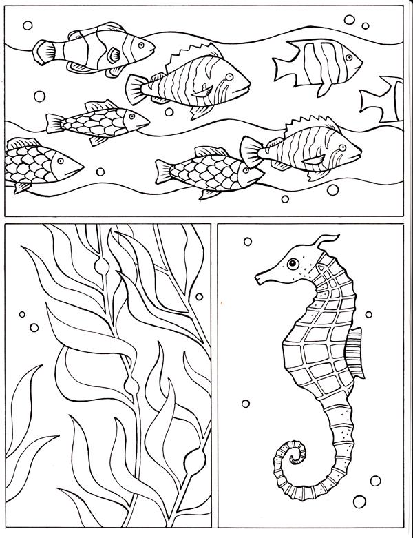 Underwater Tri Panel