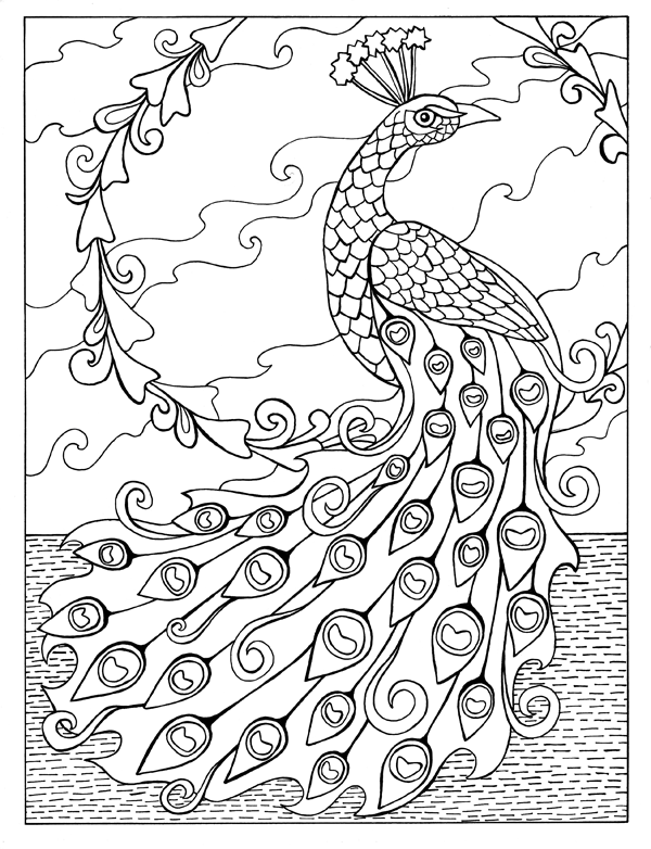 large peacock.png