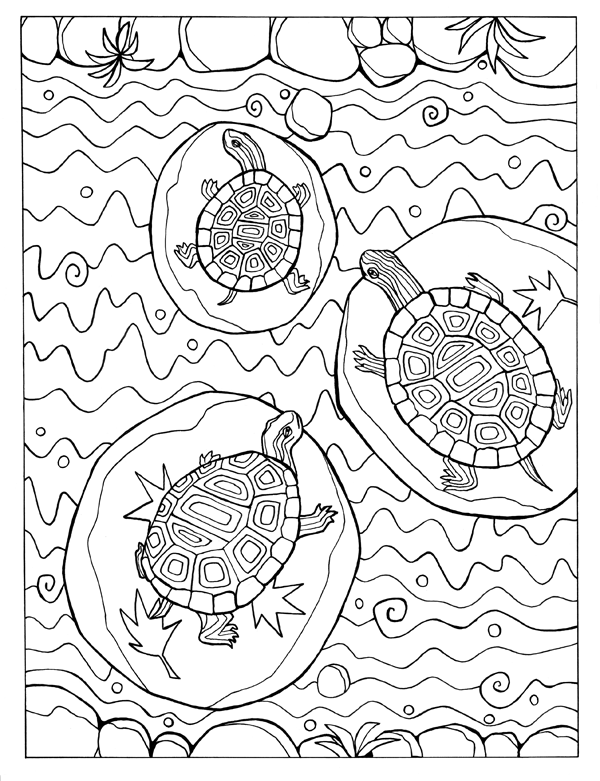 three turtles in river.png