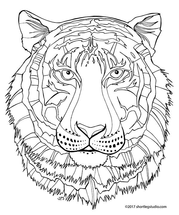 Tiger coloring sheet