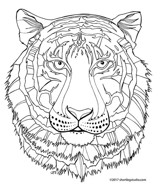 adult tiger coloring pages free tiger coloring pages printable ... | 598x500