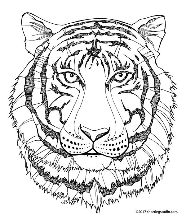 Elegant Tiger Coloring Sheet for Adults
