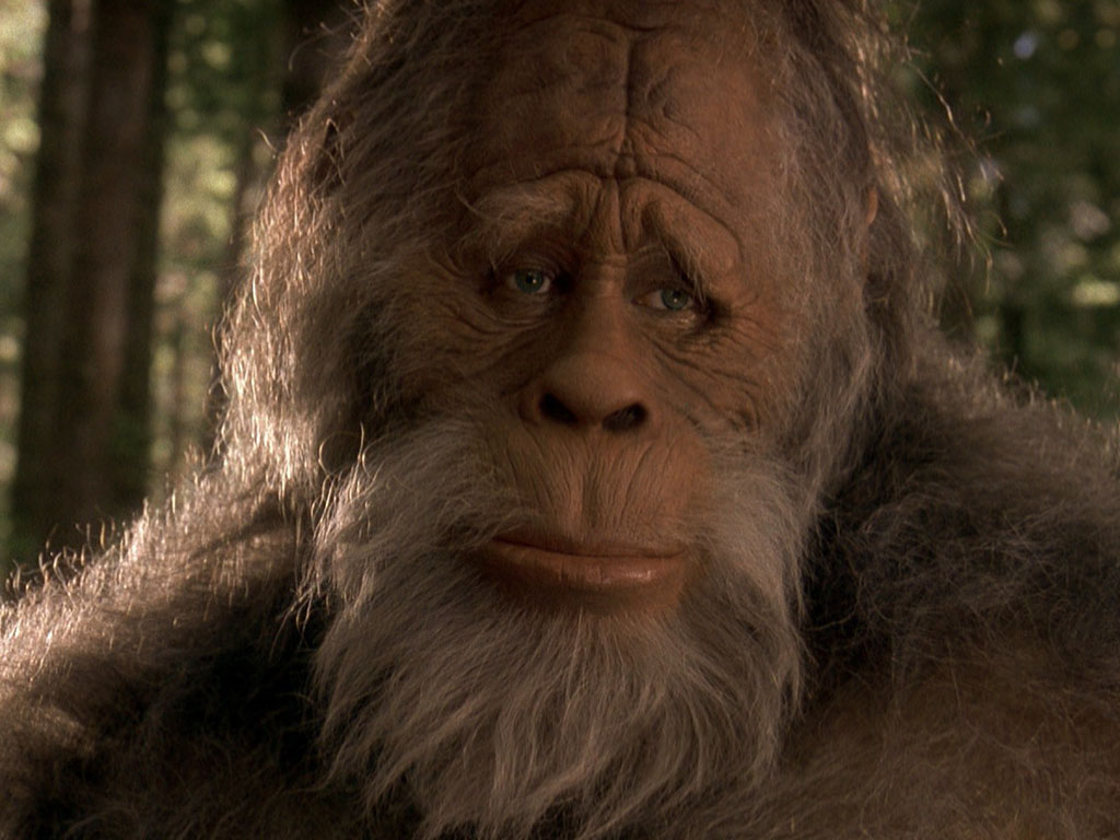 Harry and the Hendersons. Source: Amblin Entertainment.