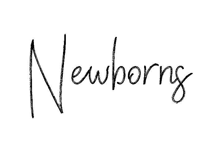 web4.png