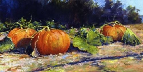 in the pumpkin patch.JPG