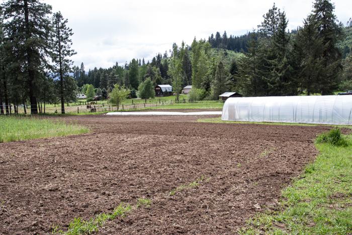 fridays-at-the-farm-may-14th-9.jpg