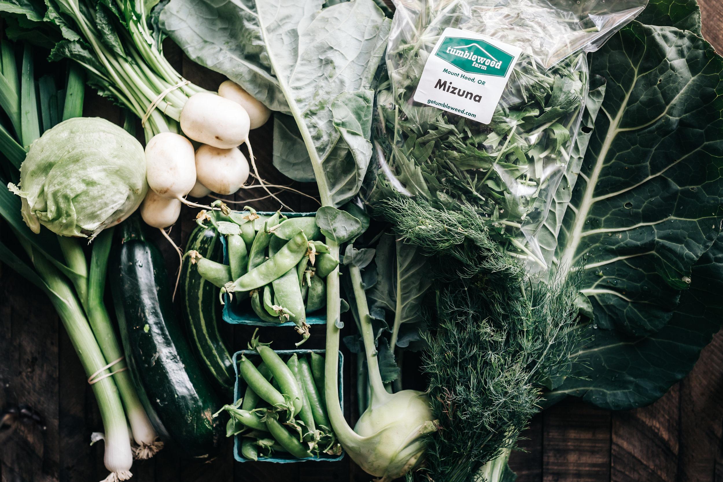 Harvest 7.jpg