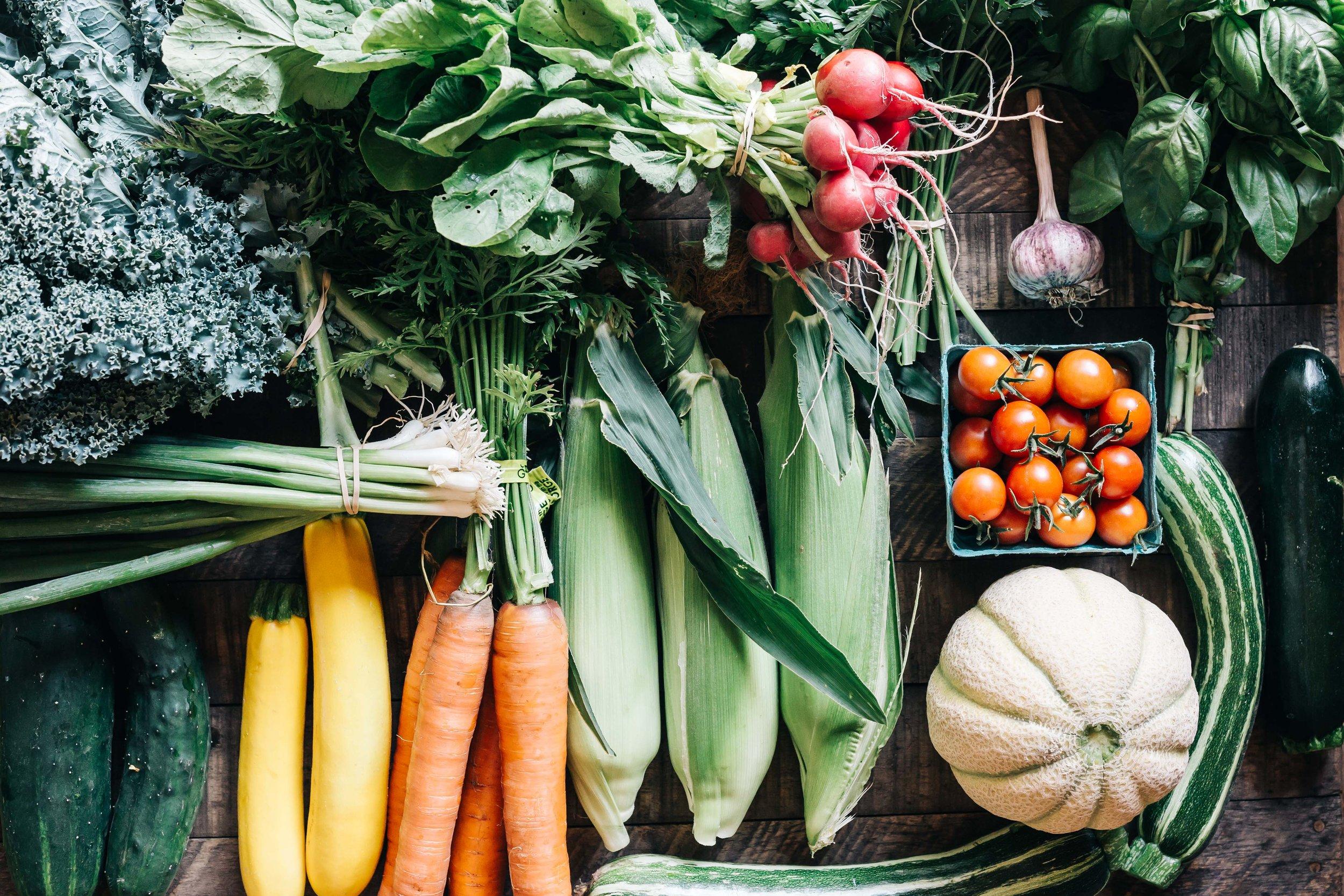 harvest week 12.jpg