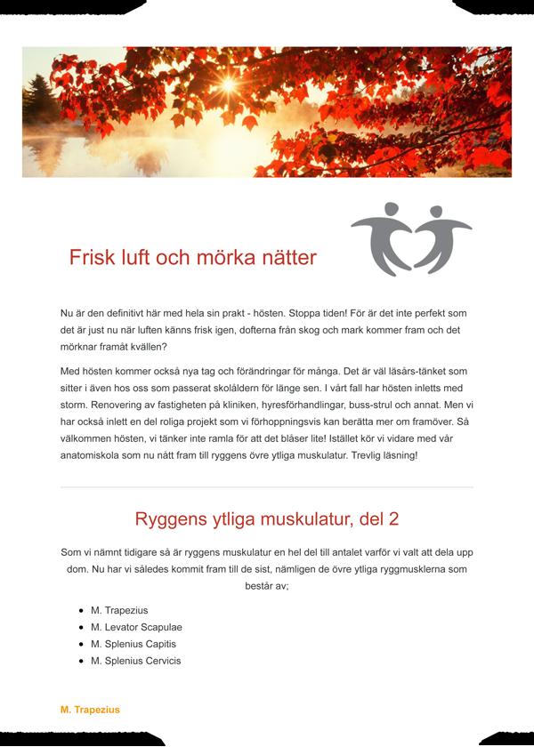 September 2018 Ryggens övre ytliga muskulatur-1.png