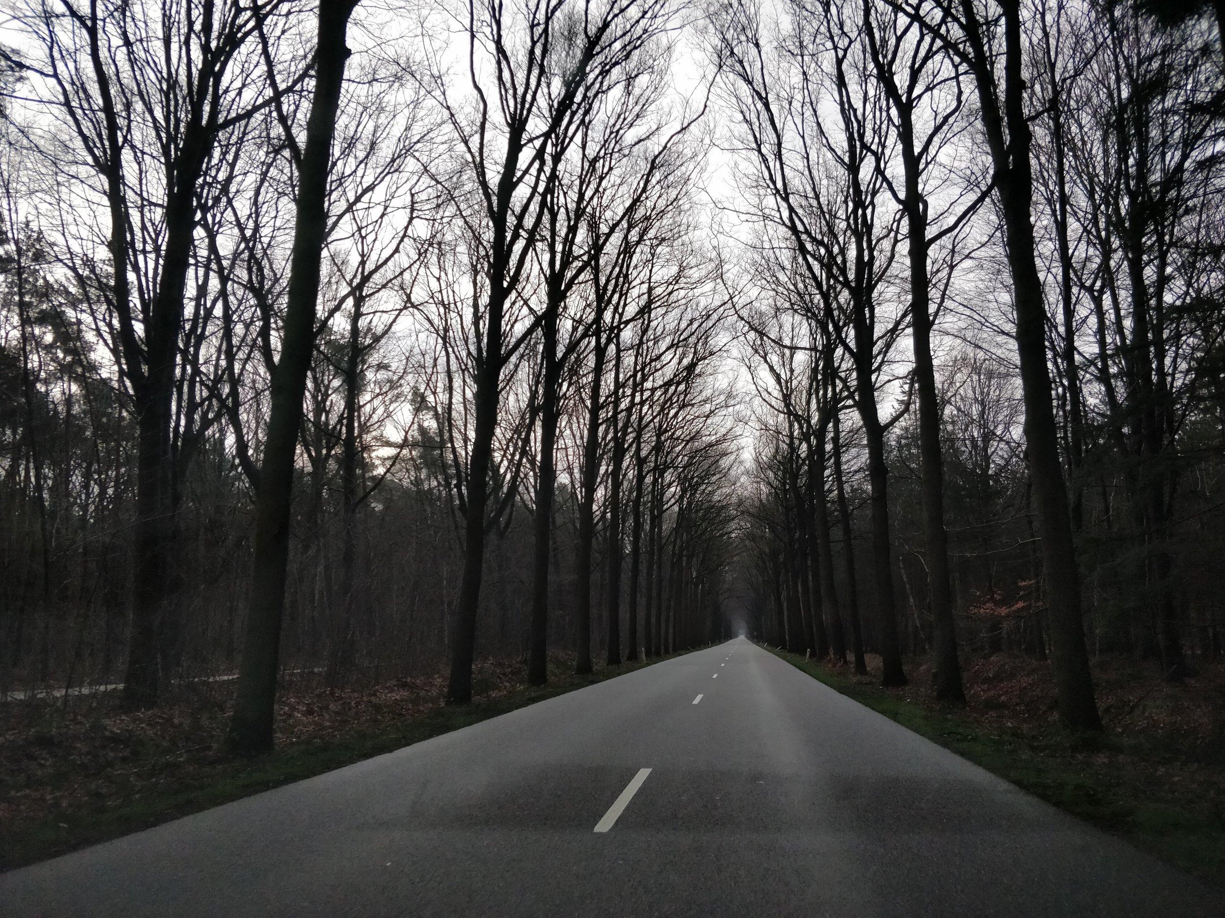 The road to Hoogerheide