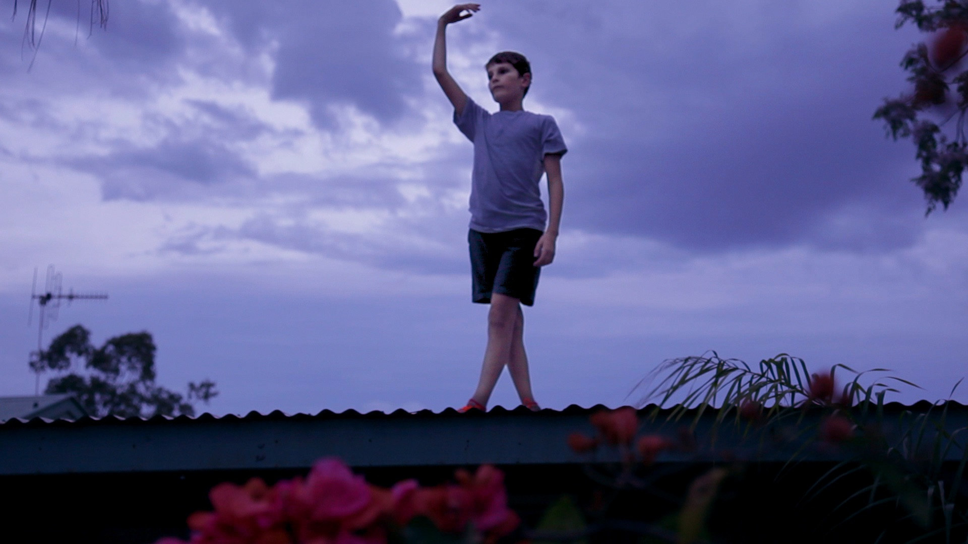 Mack on the roof