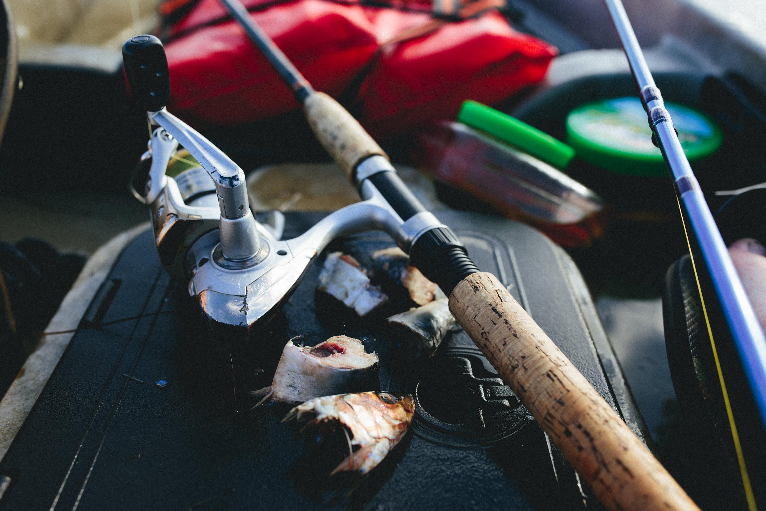mosquito-lagoon-florida-fishing