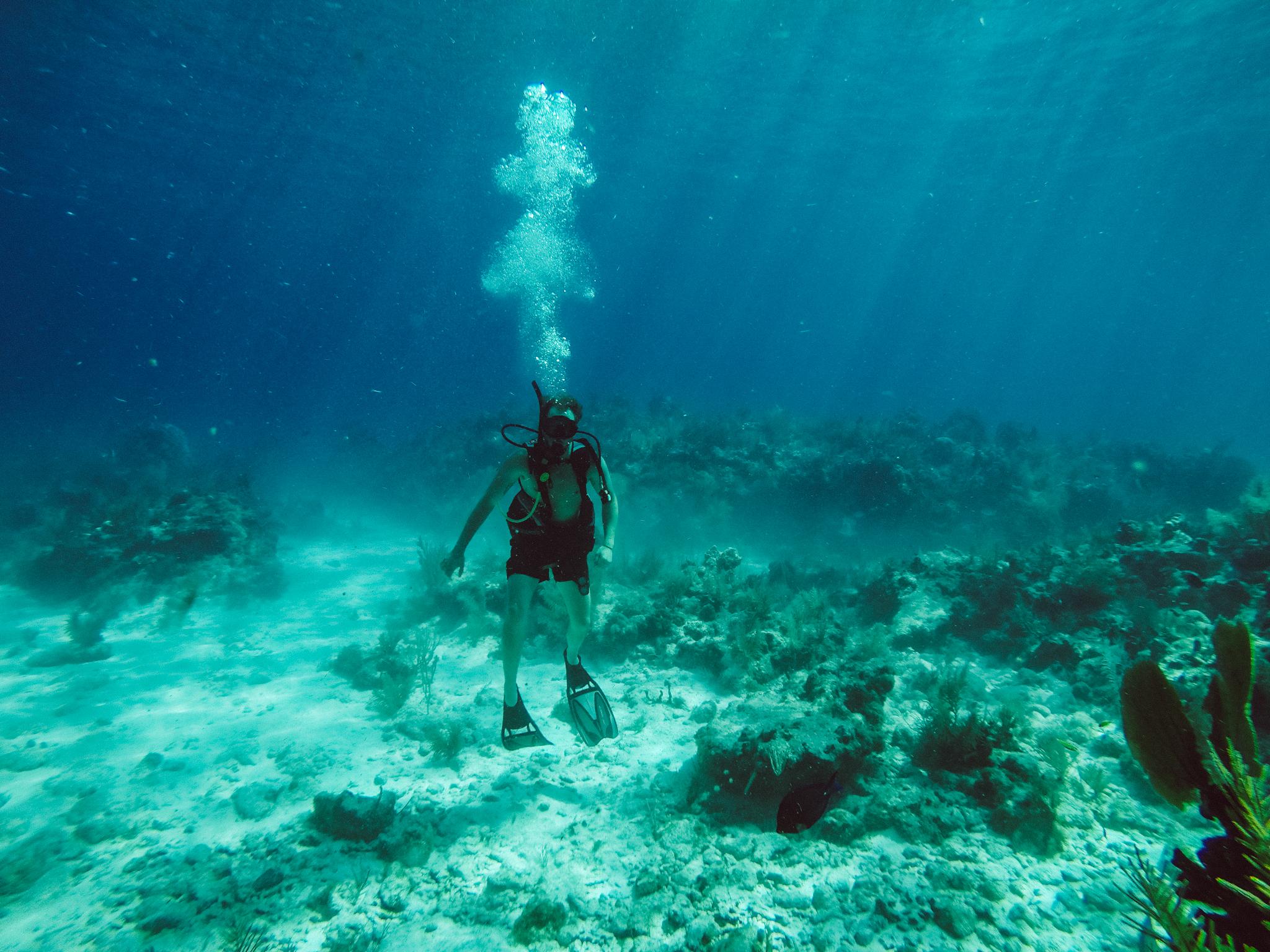 Florida-Keys-Scuba Diving-Photographer-Underwater