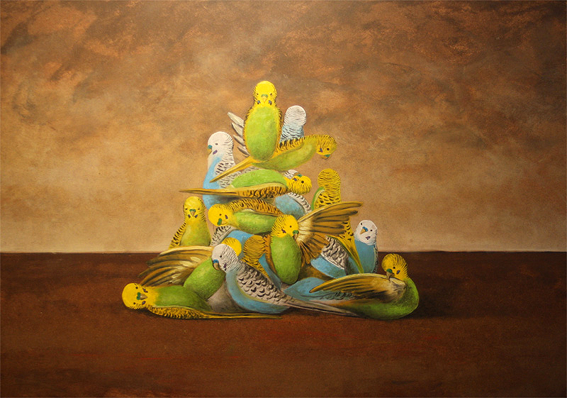 Pile Of Budgies